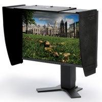 Computer monitor hood