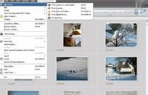 Adobe Photoshop Elements 5: Importing Photos