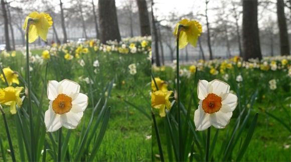 Panasonic LX3 vs. Canon G10 image quality comparison 1