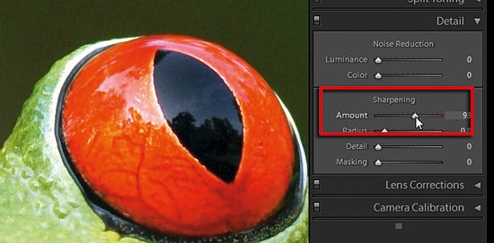Sharpening in Adobe Camera Raw part 1