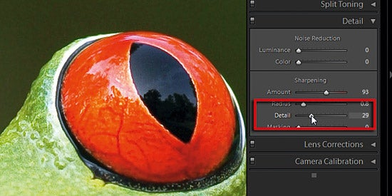 Sharpening in Adobe Camera Raw part 3