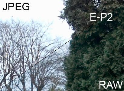 GF1 vs E-P2: EP2: RAW vs JPEG
