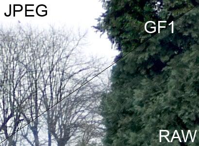 GF1 vs E-P2: GF1: RAW vs JPEG