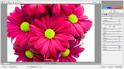 Adobe camera raw interface