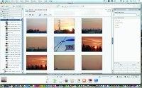 organising software Picasa