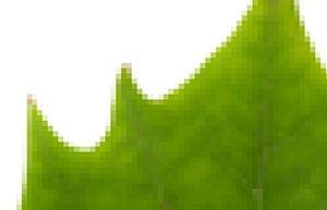 pixels 01
