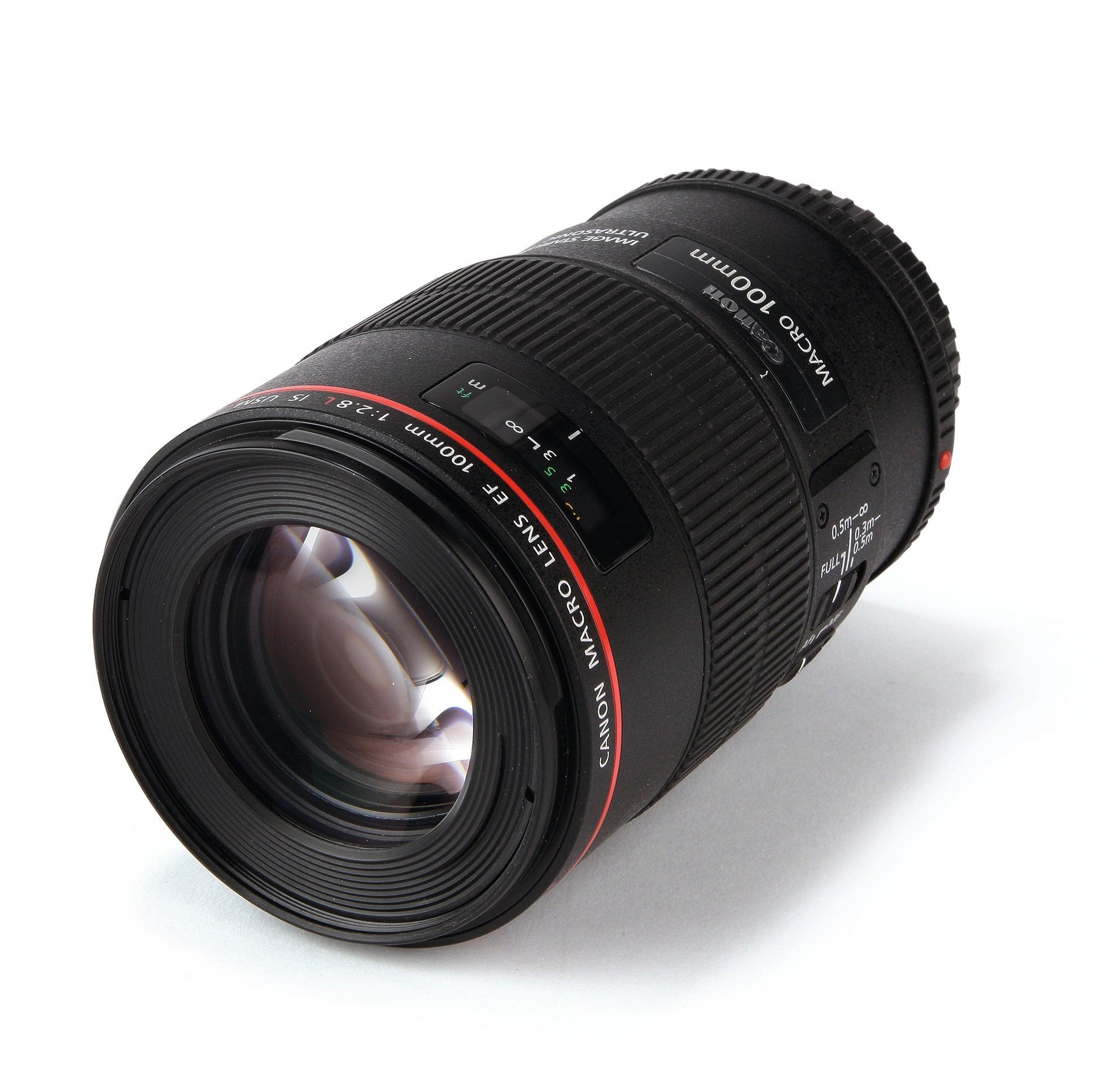 Review: Canon EF 100mm f/2.8L Macro IS USM Lens - Krishna