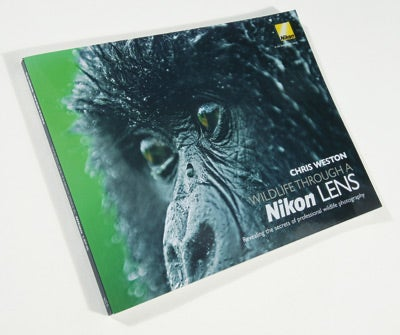 Wildlife Through a Nikon Lens