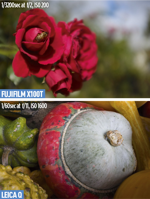 Fujifilm X100T and Leica Q Close-ups