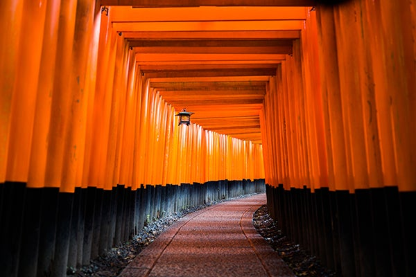 The famous Arashiyama Bamboo Grove on the outskirts of Kyoto